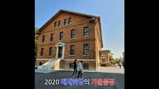 2020배재학당의 가을풍경20201026
