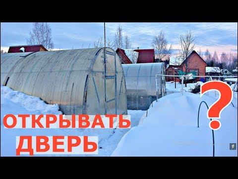 видео: Теплица зимой. ОТКРЫВАТЬ ДВЕРЬ? ЗАБРАСЫВАТЬ СНЕГ?