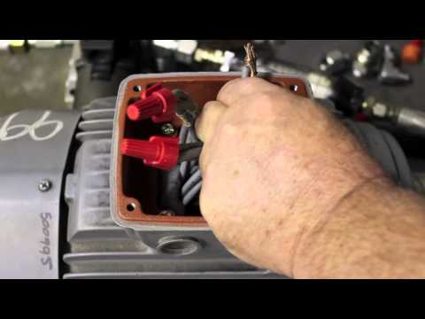 hqdefault?sqp= oaymwEWCKgBEF5IWvKriqkDCQgBFQAAiEIYAQ==&rs=AOn4CLDfUe u5duCUhmNegeXdAXvLDd5Xg 230 460 connections on an electric motor youtube  at creativeand.co