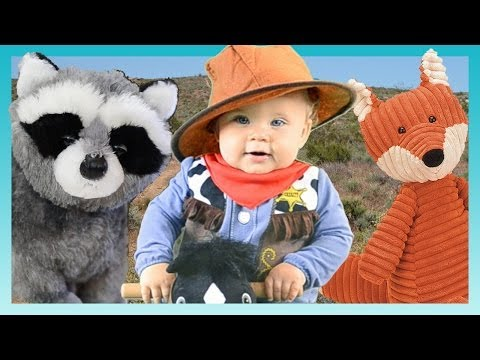 COWBOY OLLIE RETURNS! | Look Who's Vlogging: Daily Bumps (Ep