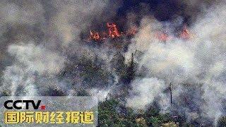 《国际财经报道》 20190825| CCTV财经