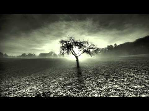 Content - The Maori [FREE D/L]