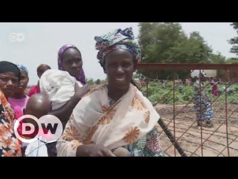 Mali: Resisting climate change | DW English