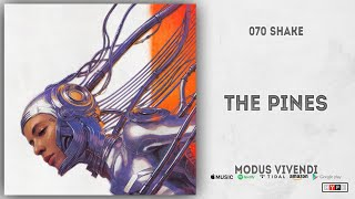 070 Shake - The Pines (Modus Vivendi)