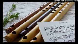 Cantabile, Wq.55-3/3, Carl Philipp Emanuel Bach (1714-1788)