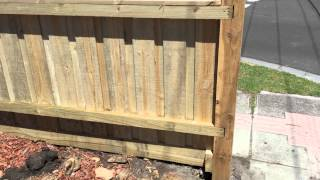 Paling fence with exposed posts and capping