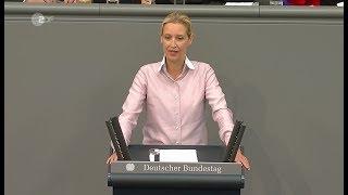 Weidel (AfD) im Bundestag über Kopftuchmädchen und Taugenichtse
