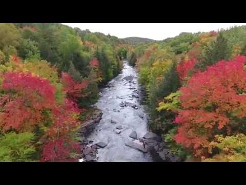Ontario Fall Colours Report - Drone Footage