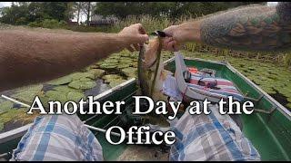 Bass Angler Nation - ViYoutube