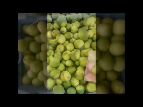 Fruit Delivery Companies, Freshfruit