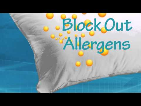 TLC Pillows Allerease Warm and Hot Water Hypoallergenic