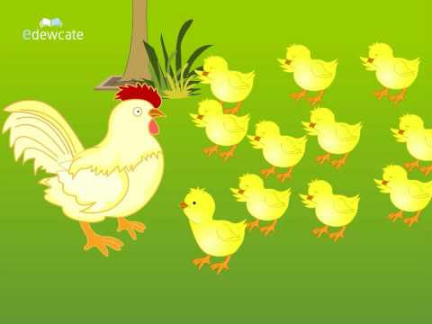 Telugu Cartoon Story | Bangaru Kodi Pilla | A Wise Little Hen
