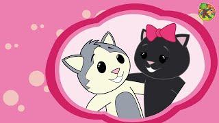 Bücür ve Kara Kedi