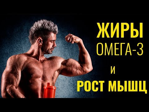 ОМЕГА-3 ЖИРЫ И РОСТ МЫШЦ