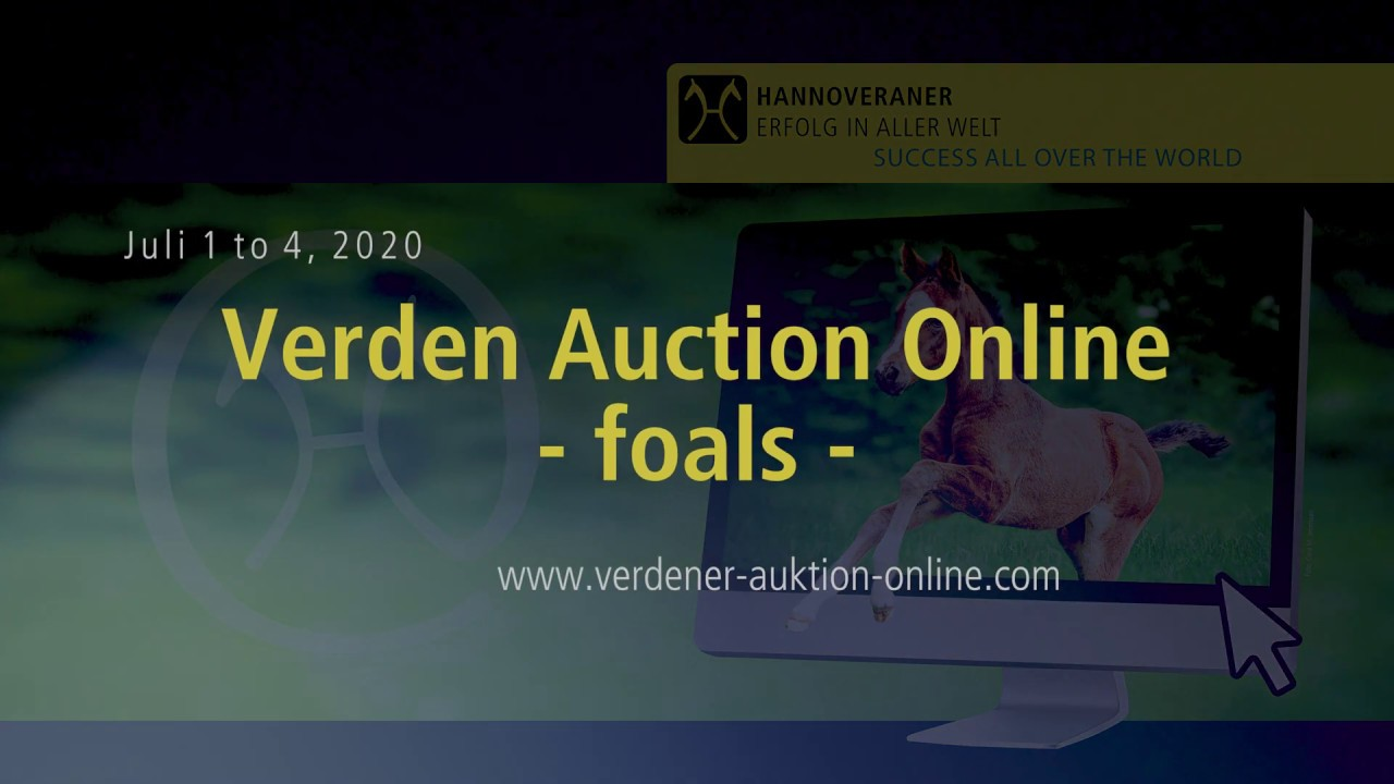 5th Verden Auction Online Foals - Dressage Talents