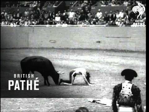 Bull Fighting In San Francisco (1955)