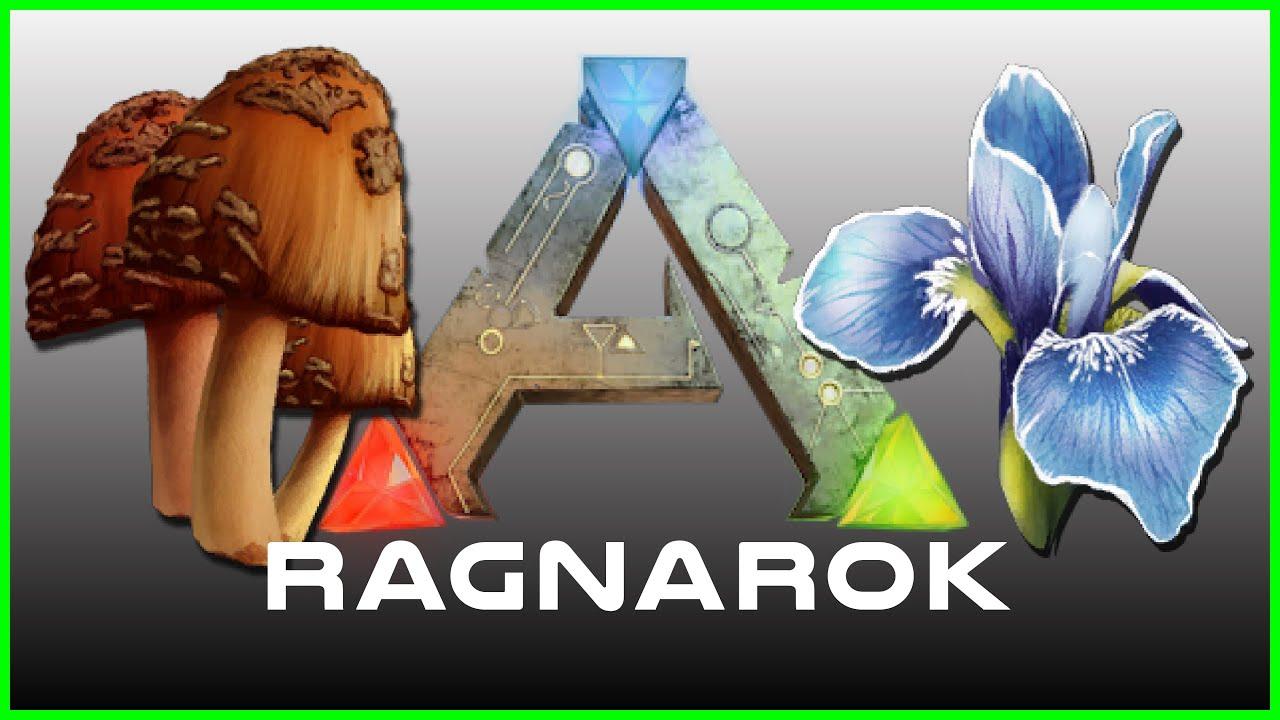 Ragnarok: Flowers, Mushrooms, Silk & Fiber