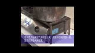 World Bank Investor Video Project Example - Eco Farming in China (Chinese Subtitles)