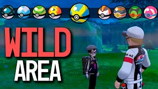 HOW TO GET ALL Poke Ball Types in Wild Area in Pokémon Sword and Shield