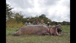 Outdoor Quest Ep#6 2018, Hippo in Tanzania