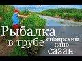 Рыбалка на экран - паук. Рыбалка на подъемник. Рефтамид спасет мир. Сазаны  монстры )
