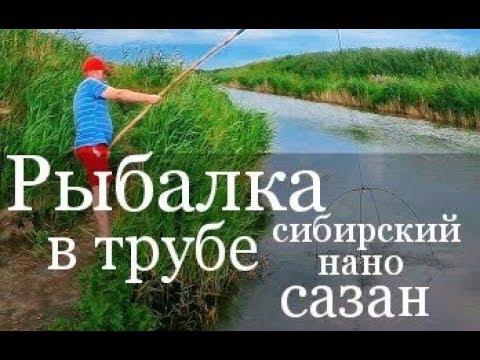 Рыбалка на экран
