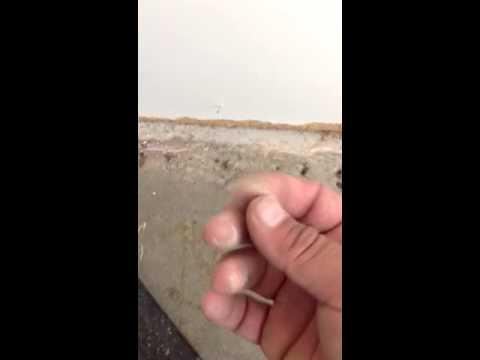 Water Damage beneath laminate flooring.....