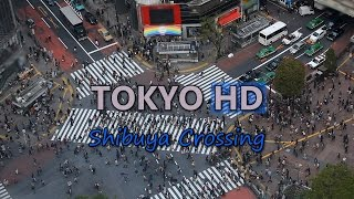 Tokyo Japan Shibuya Crossing Busy Shopping Street Car Traffic Jam People Crowd Video Stock Footage