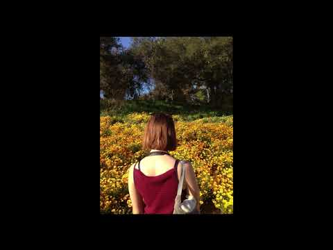 Death Grips - electronic drum solo dub mix (single take)