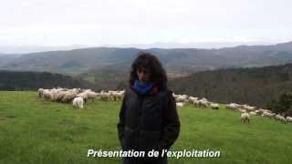 Julie Resneau et PâtureSens - 400 ovins, 100% à l'herbe en pâturage