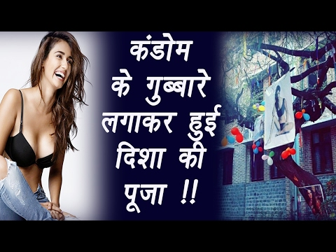 Thumbnail: Disha Patani worshipped by DU students to lose virginity | FilmiBeat