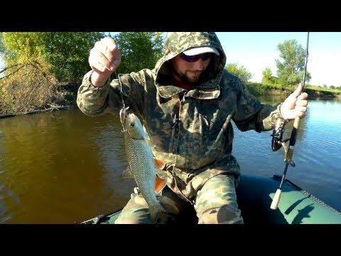 Разведка на хищника! Рыбалка в июне на реке - YouTube