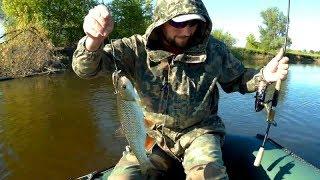 Розвідка на хижака! Рибалка в червні на річці