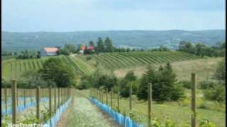 Nova Scotia Vineyard For Sale, Home For Sale, And Land For Sale - Wine Real Estate