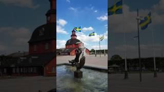 Svenska flaggans dag och Sveriges nationaldag
