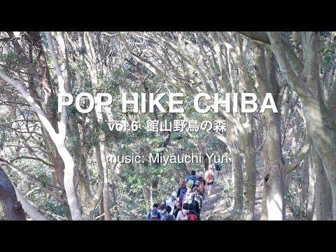 POP HIKE CHIBA vol.6 館山野鳥の森 music by Miyauchi Yuri