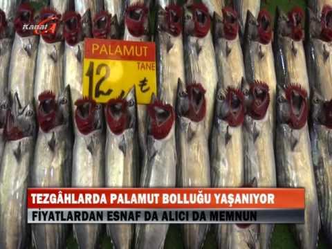 Kanal G - BALIKÇI TEZGAHLARI BALIKLARLA DOLDU TAŞTI