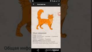 Герои книг Коты воители! Рассматриваем приложение Герои книг.