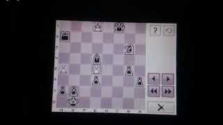 CHESS Chessmaster Nintendo DSi XL Rated Game 17.11.14