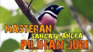 Download Lagu MASTERAN PALING VIRAL - JURI PALING SUKA INI mp3