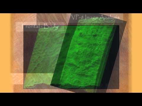 Shroud of Turin Presentation Example Video
