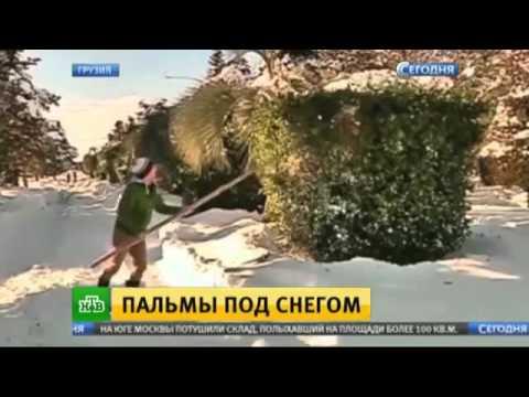 Сегодняшние новости на канале россия-1 видео