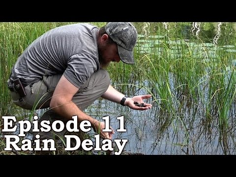 Catch n Cook SNAILS | Survival Tactics | The Wilderness Living Challenge 2016 S01E11 - RAIN DELAY