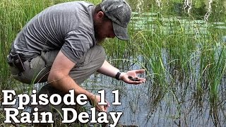 Catch and Cook SNAILS | Survival Tactics | The Wilderness Living Challenge 2016 S01E11 - RAIN DELAY Video