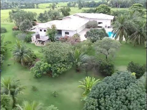 Fazenda Boa Vista - Tocantins