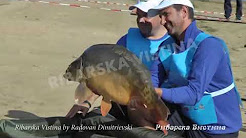 Biggest fish of 18th World Championship for Carp in FRANCE 21-24 Septembre Lac-Réservoir du Bourdon