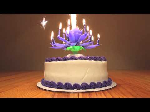 The Birthday Candle Video FireWork On Your Big Days