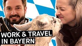 Work & Travel in Deutschland – Wer macht sowas eigentlich? || PULS Reportage