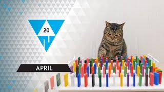 WIN Compilation APRIL 2020 Edition | Best of March