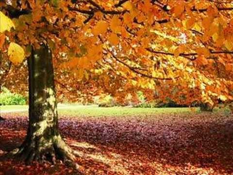 Emotional Horizons -  Autumn (Original Mix)